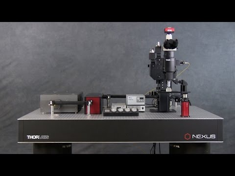 Bergamo - II Series - Imaging - Imaging Systems & Components