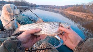 Рыбалка ранней весной на кружки с горохом кашу и макушатники с пенопластом