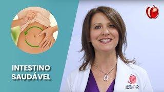Intestino saudável: Qual a importância?