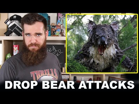 australia's-deadliest-animal-attacks-reporter