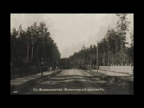 Всеволожск / Vsevolozhsk: 1910-1914