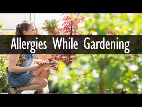Save Yourself from Allergies While Gardening