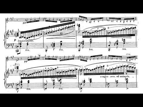 Grand duo concertant sur le 'Le marin', S.128 (Liszt) - Sheet Music