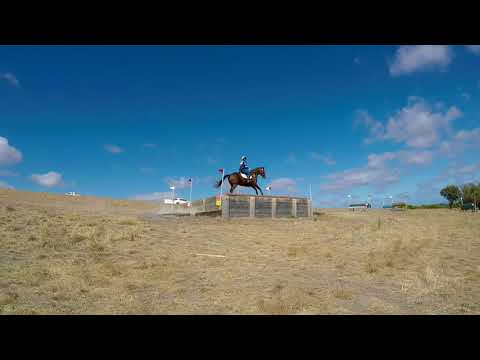 Rider 36 Kate Bailey Riding ACACIA RIDGE BEAU DANCER CNC 1* Reynella Horse Trials 2018