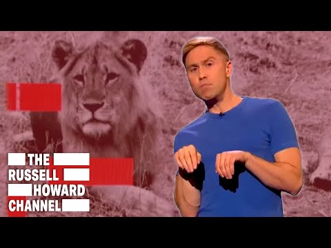 The Most Amazing Animal Stories | The Russell Howard Channel