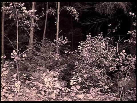 Andrei tarkovski le miroir zerkalo 1974 1 youtube for Le miroir tarkovski