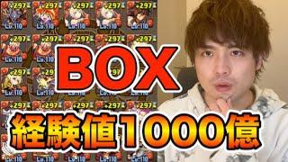 【パズドラ】総経験値1000億のかわいいBOX