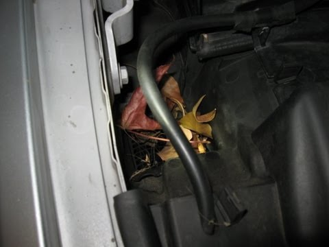 BMW drain water engine compartment flooding prevent by froggy