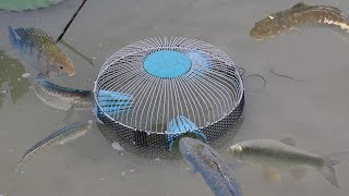 How To Make Fish Trap From PVC Water Pipe And Electric Fan Guard