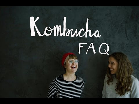 VLOG 17: Kombucha Brewing FAQ, Everything You Ever Wanted to Know!