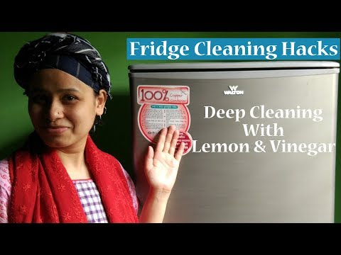 Fridge Cleaning Tips and Ticks/How to clean a Fridge/Cleaning Hacks