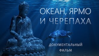 ОКЕАН, ЯРМО И ЧЕРЕПАХА