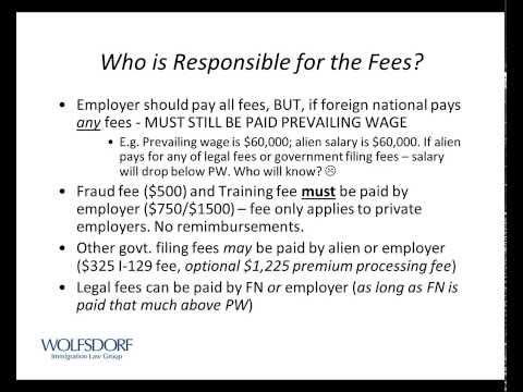 F-1 Student Webinar - Work Visa Options after OPT 1/16/2014