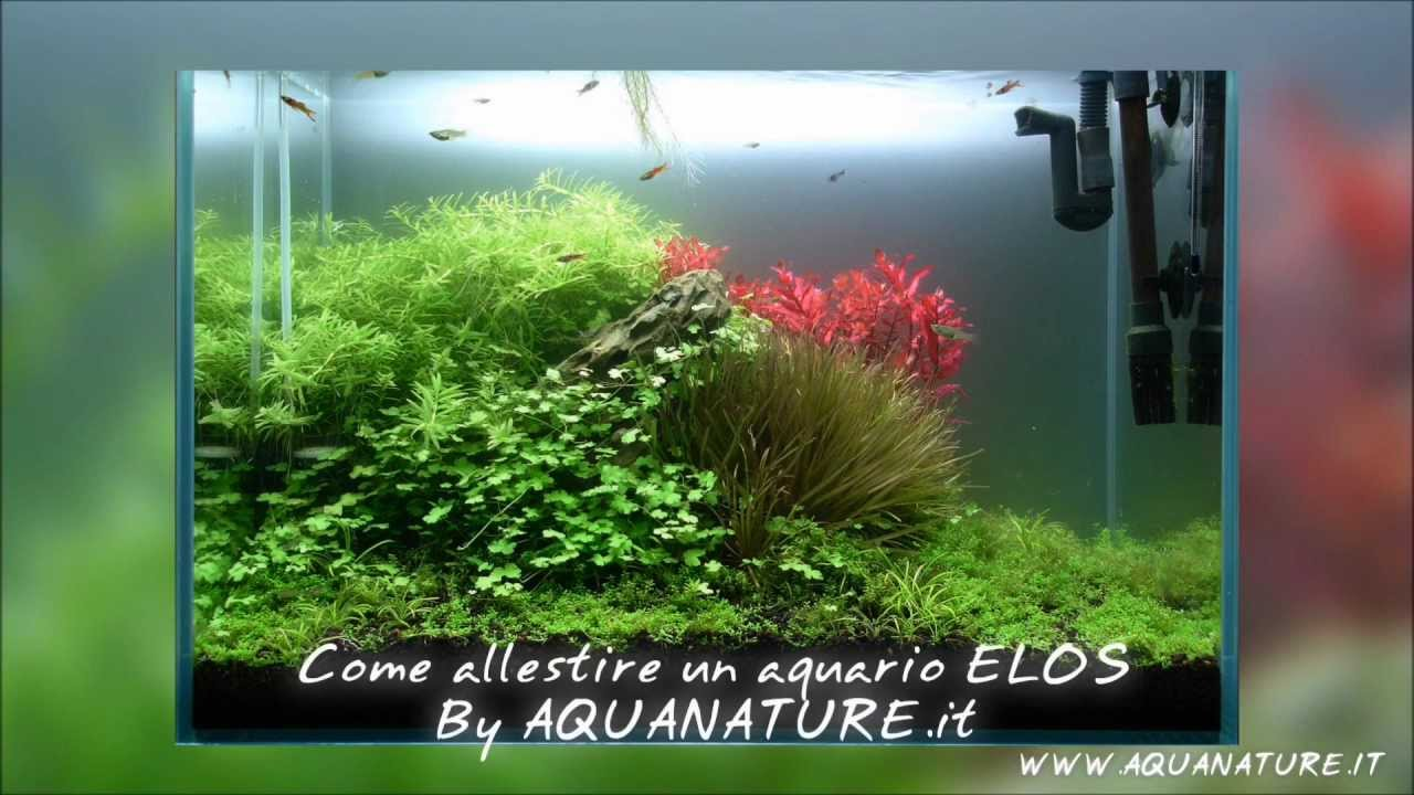 how to make an elos planted tank par 2 youtube. Black Bedroom Furniture Sets. Home Design Ideas