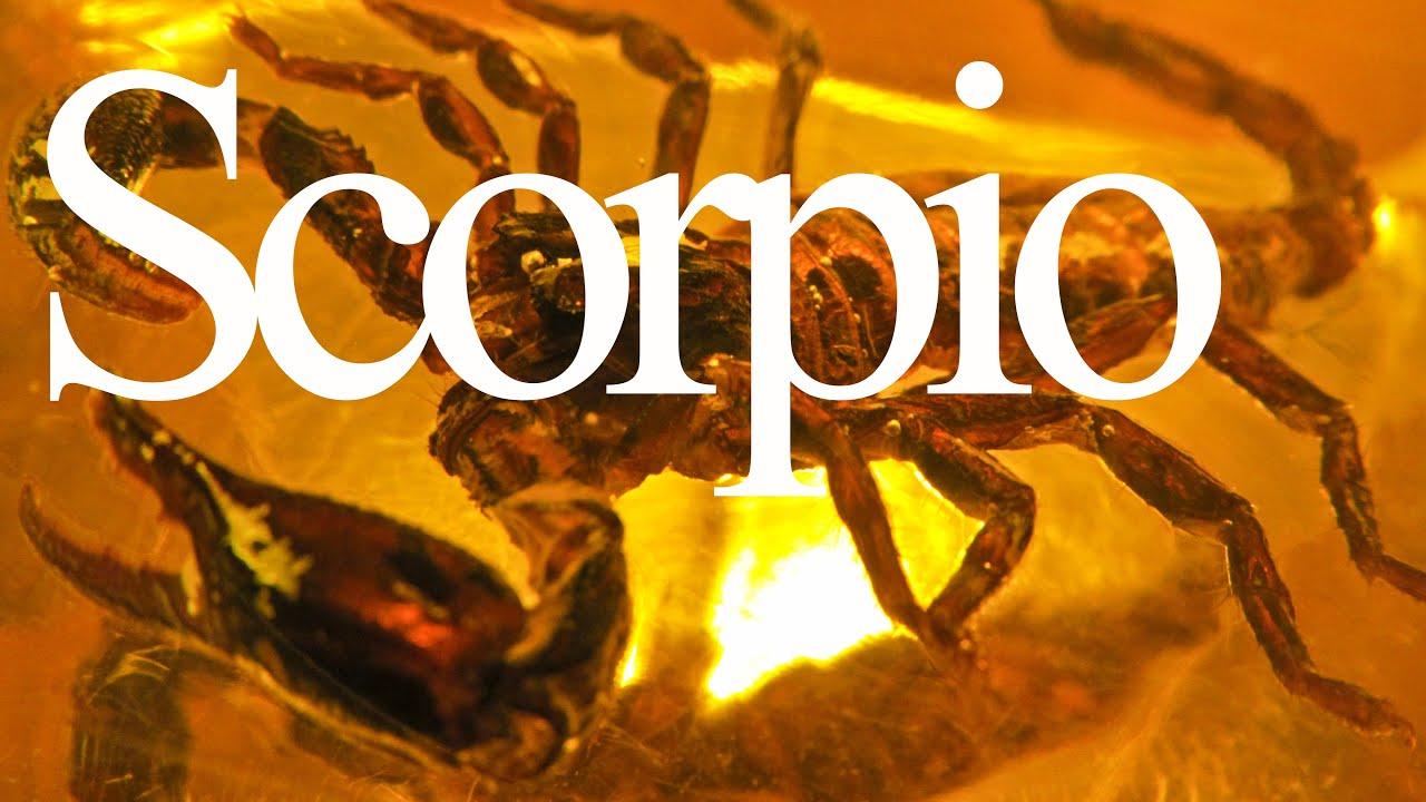 Scorpio Traits and Personality | Zodiac Sign Focus #SCORPIO | Gregory Scott  Astrology