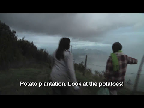 Andes Adventure: Lost in the Mountains