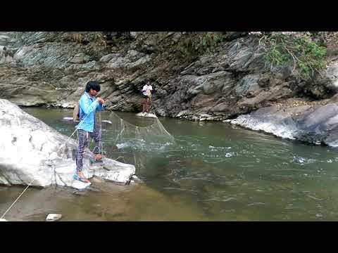 वाटर फॉल में मछली पकड़ना, fishing in water fall, uttrakhand, उत्तराखंड