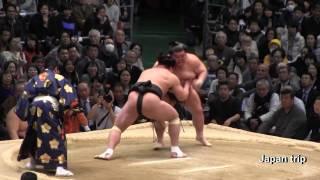 2017大相撲春場所での日馬富士 vs 豪風の取組。