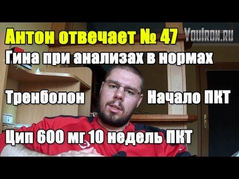 Антон Отвечает №47 ТРЕНБОЛОН. КОГДА НАЧАТЬ ПКТ. ГИНЕКОМАСТИЯ