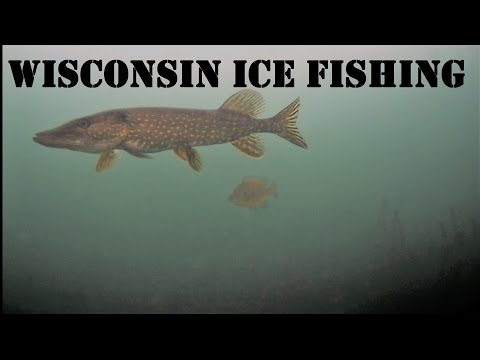 Crazy Underwater Ice Fishing!!