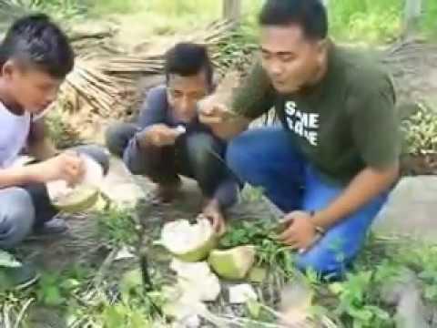 Objek Wisata Kota Kuala Tungkal Kabupaten Tanjung Jabung Barat Prov. Jambi