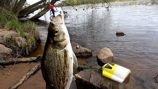 Hmoob nuv ntses dawb/ Hmong fishing