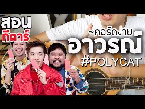 สอนกีตาร์ EP.44 อาวรณ์ I Want You - POLYCAT「คอร์ดง่าย」  Te iPLAY
