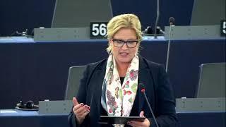 Karin Karlsbro 26 Nov 2019 plenary speech on WTO