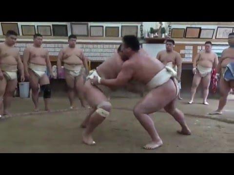 【近畿大学】相撲部2016