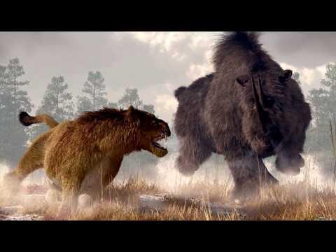 Вопрос: Был ли в Австралии крупный сумчатый хищник, аналог льва?