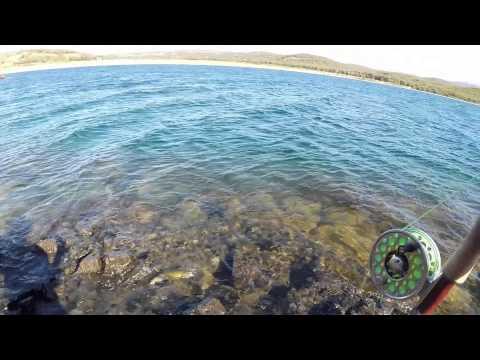 pesca-de-trucha-fontinalis-con-mosca-seca-(3wt-rod)---pique-en-vivo-[gopro]
