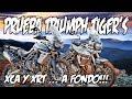 PRUEBA TRIUMPH TIGER 'S 800 A FONDO !!! BUSCANDO LA MEJOR MOTO TRAIL