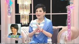 戲棚下的陳亞蘭 2014.05.16SS小燕之夜完整版
