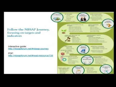 Incorporating Targets and Indicators into NBSAPs