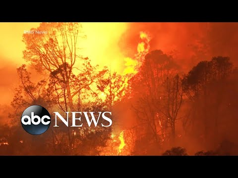 Wildfires claim at least 3 more lives, authorities urge evacuations | WNT