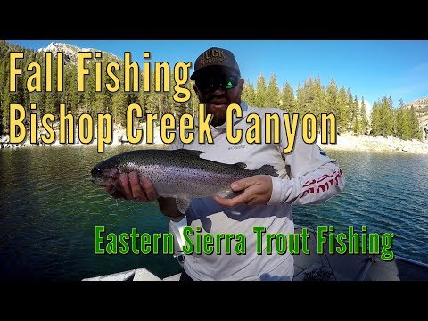 Fall Fishing Bishop Creek Canyon - Eastern Sierra Trout Fishing