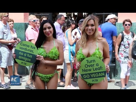 U.S. NGO's lettuce models promotes vegan diet in Cuba