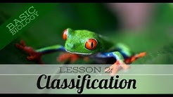 Basic Biology. Lesson 2 - Classification of living things (GCSE Science)