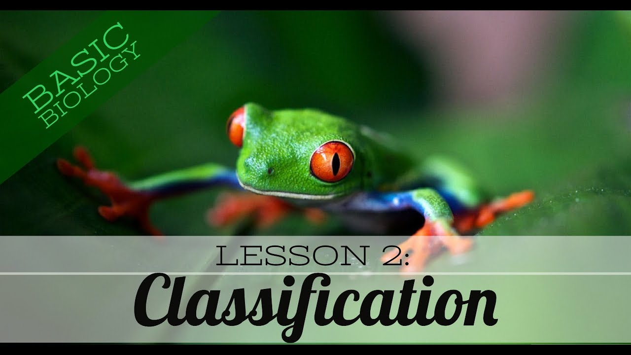 Basic Biology  Lesson 2 - Classification of living things (GCSE Science)