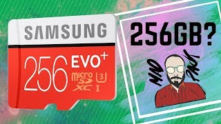 Samsung Evo Plus 256GB  - Best Micro SD?