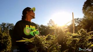 """Frozilla ft Yukmouth and Harry O """"In My Life"""" (Music Video)"""