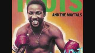 Watch Toots  The Maytals Never Get Weary video