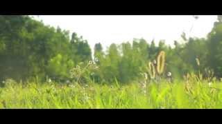 Наташа и Женя - свадебный клип