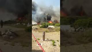 Incendio sul litorale di Brindisi a ridosso del villaggio Acque Chiare