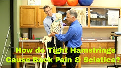 hqdefault - Lower Back Pain Due To Tight Hamstrings