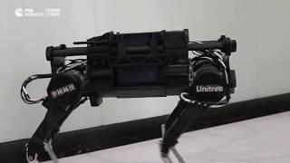Механическая собака Laikago