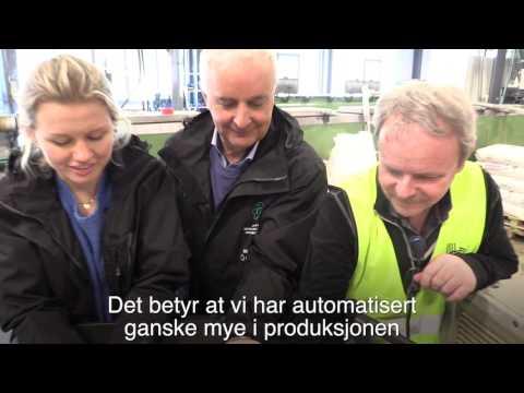 Hallingplast AS - Jakten på Norges Smarteste Industribedrift