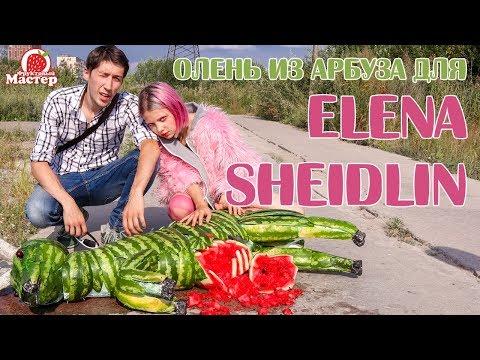 Проект - Олень из арбуза для Elena Sheidlin