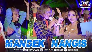 Dj Theplex - Mandek Nangis - Remix Full Bass (Official Music Video)