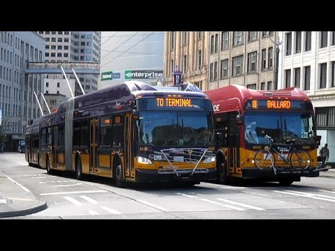 Buses in Seattle, WA (Volume Eight)